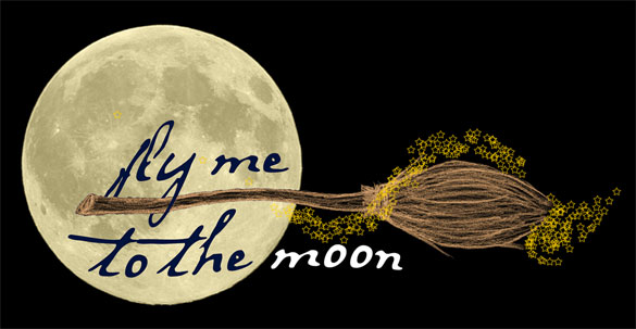 Fly Me to the Moon by Amy Crook