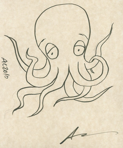 Octopus sketch by Amy Crook