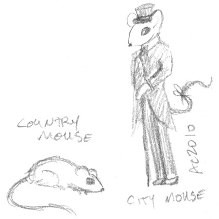 Country Mouse, City Mouse by Amy Crook