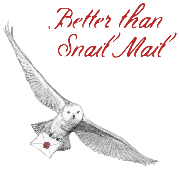 Better Than Snail Mail by Amy Crook