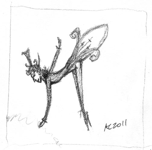 Firefly Fairy, sketch 3, by Amy Crook