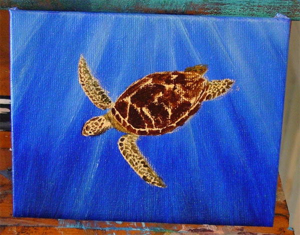 Green Sea Turtle, step 3, by Amy Crook