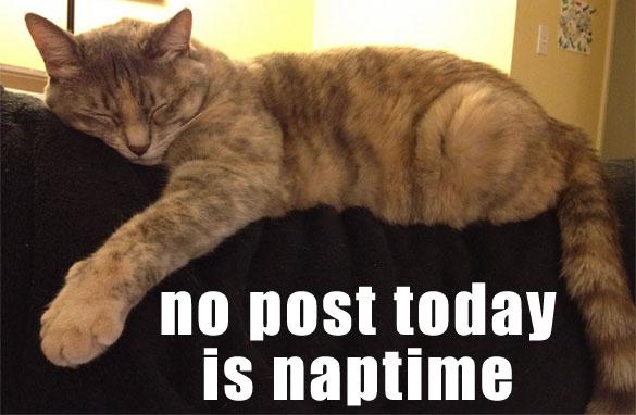 Belladonna sez: no post! naptime!