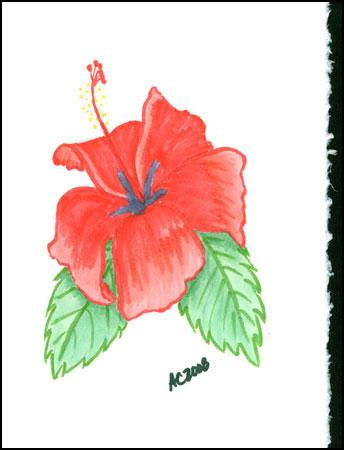 Birthday Flower by Amy Crook