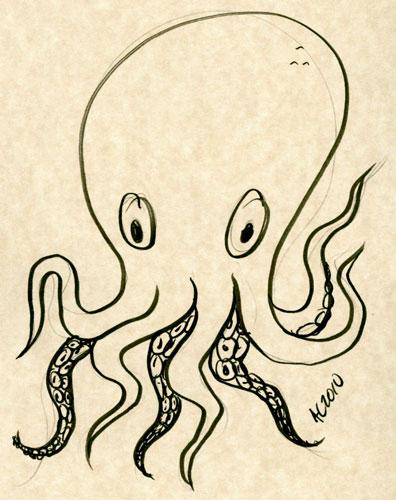 Octopus sketch 2 by Amy Crook
