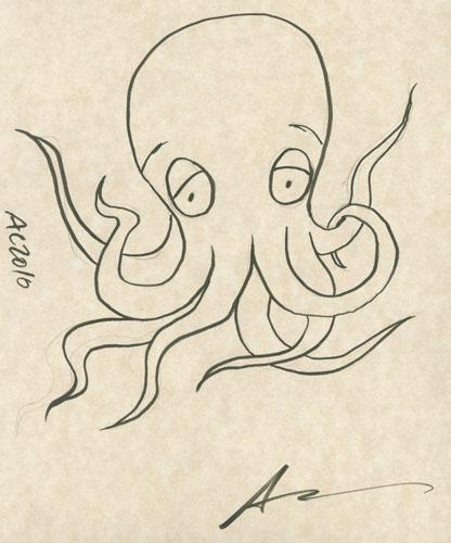 Octopus sketch by Amy Crook