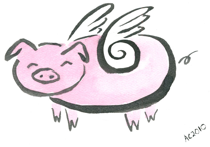 Flying Pig by Amy Crook
