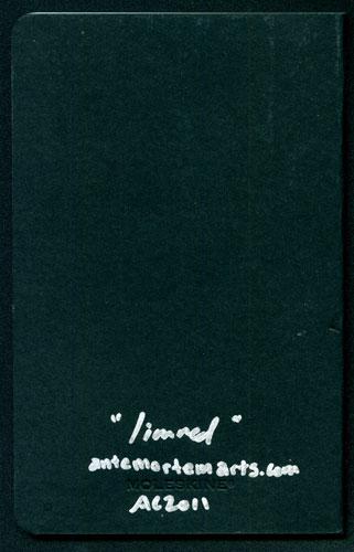 Limned, customized Moleskine, back, by Amy Crook