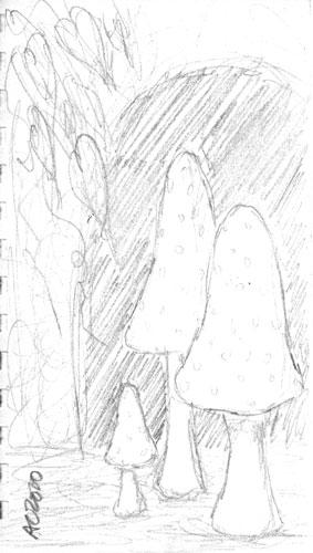 Mushroom Cave by Amy Crook