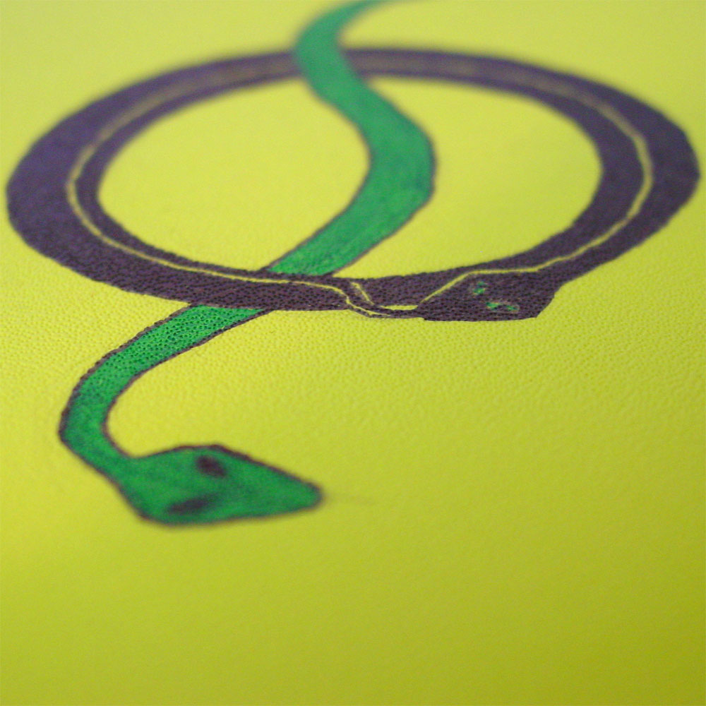 Twining Snakes Volant, detail, by Amy Crook